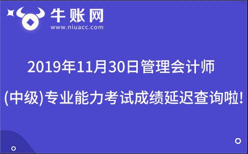 2019年11月30日管理会计师(中级)专业能力考试成绩延迟查询啦!