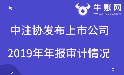 中注协发布上市公司2019年年报审计情况快报(第三期).png