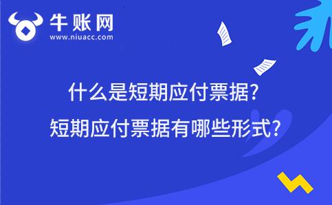 什么是短期应付票据?短期应付票据有哪些形式?