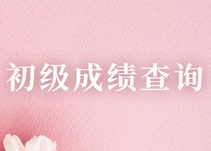 上海市2020年初级会计职称考试成绩查询