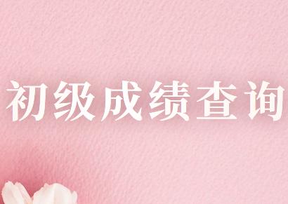 2020年河北省初级会计职称考试成绩查询