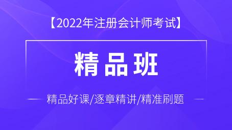 2022年注册会计师精品班(全六科)