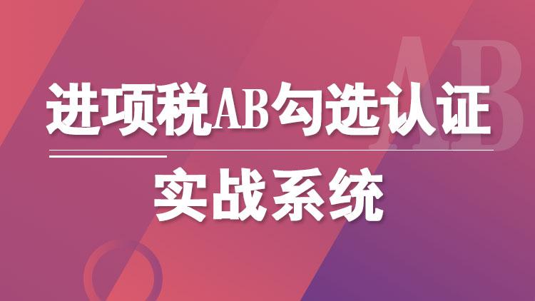 进项税AB勾选认证实战系统(高清视频+实训系统)