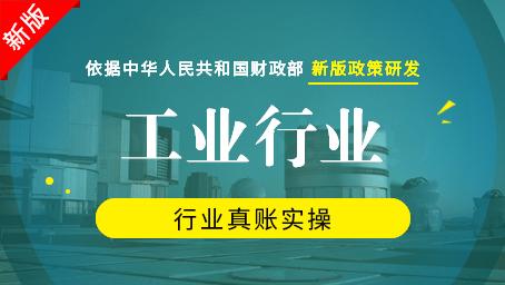 工业真账实操(一般纳税人)(新版)
